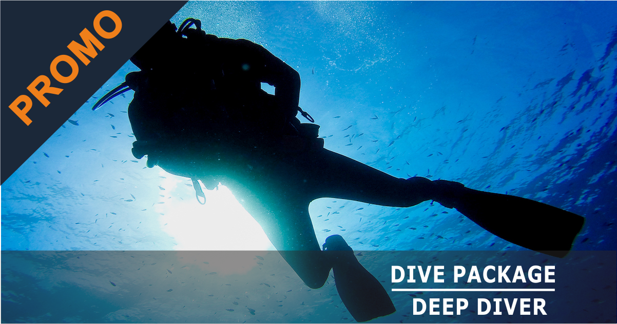 DIVE PACKAGE & DEEP SPECIALTY